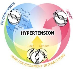 causes of hypertension
